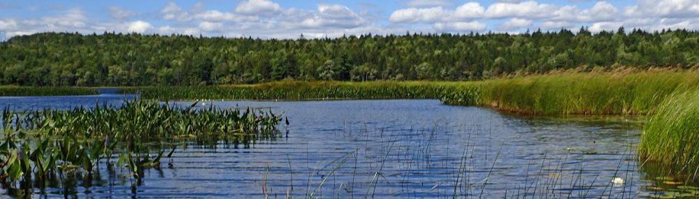 Sandy Lake Conservation Association